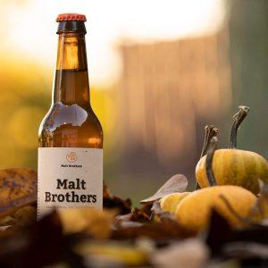 Bière blonde x6 bouteille de 33cl